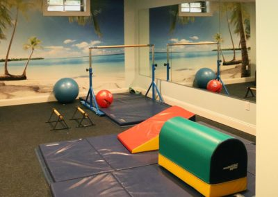 Basement Home Gym Design, Installation & Renovations